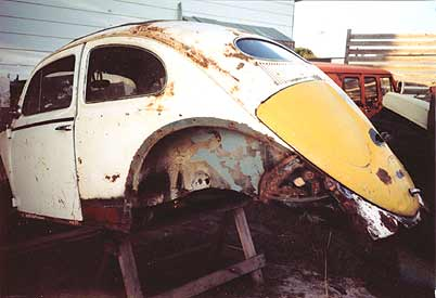 oval window beatle restoration